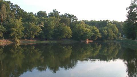 pond Live Action