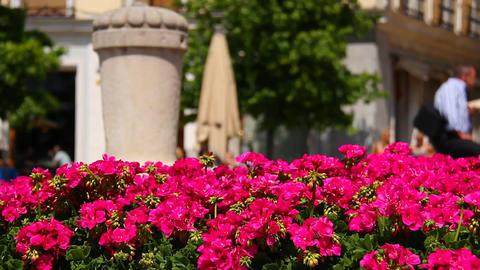 Mediterranean European City Scene 2 in 1 Stock Video Footage