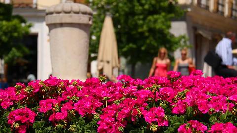 Mediterranean European City Scene 2 in 1 Footage