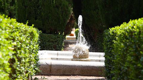 Jardines De Sabatini 09 Madrid Footage