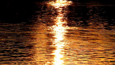 Sunset Reflections on River Live Action