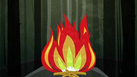 Camp Fire Night Loop HD Stock Video Footage