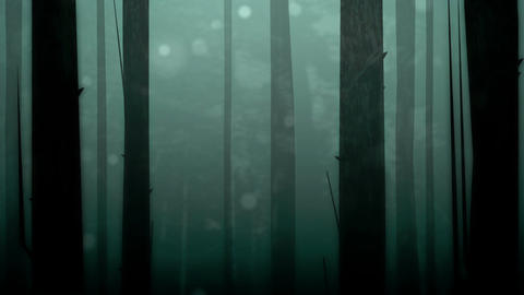 Spooky Forest Loop HD Animation