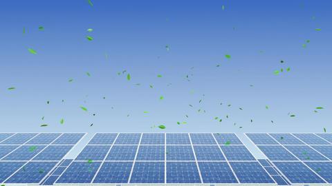 Solar Panel H1G HD Stock Video Footage