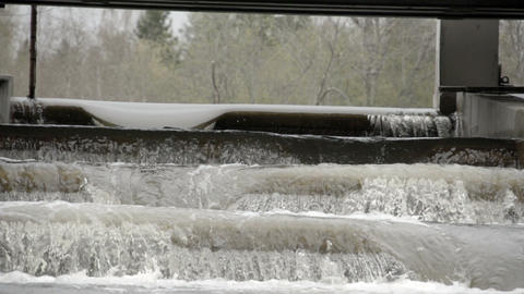 The rushing of water from a fish ladder Footage