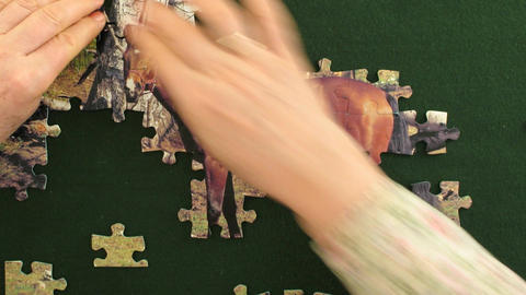 Time-lapse of solving the jigsaw puzzle 2 Stock Video Footage