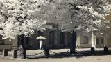 Infrared Finland: Guard Of Honour Near Finnish President Headquarters 1 stock footage