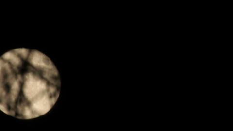 Time-lapse of full moon moving behind the trees 8a Stock Video Footage