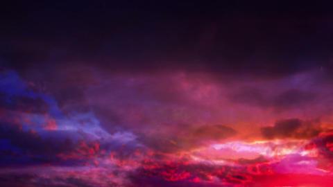 DOG Sunset37 mov 1 Animation