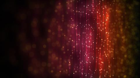 Light web loop Stock Video Footage