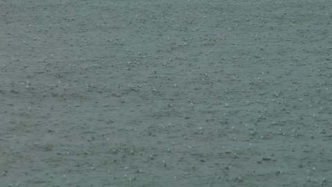 rain water 01 Footage