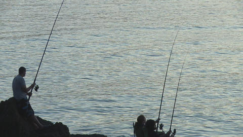 rods and jumping fish closer Stock Video Footage