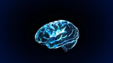 brain Stock Video Footage