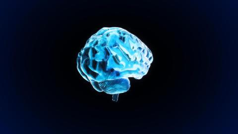 brain rotate Stock Video Footage