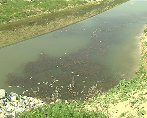 Karla lake Footage