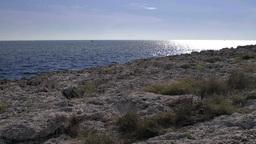 Rocky coast in Istria Footage