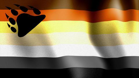 waving bear community flag Stock Video Footage