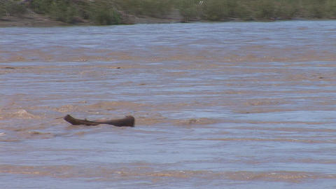muddy river 2 Stock Video Footage