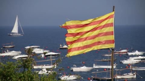 Catalonia Flag Waving On The Seaside stock footage