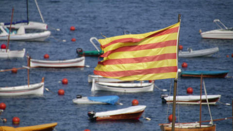 Waving Catalonia Flag Live Action