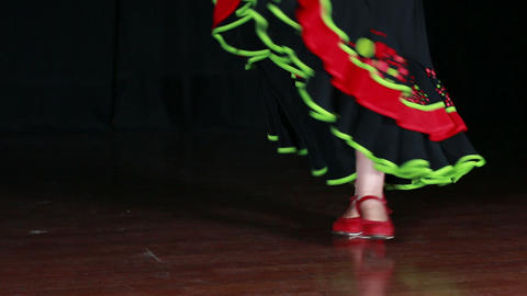 Typical Spanish Folklore Flamenco Dance Live Action