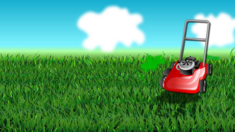 Grass And Mow stock footage