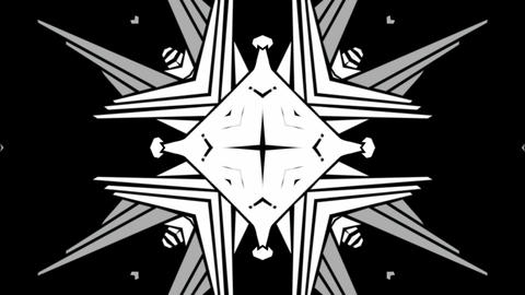 Kaleida Wing 1 Animation