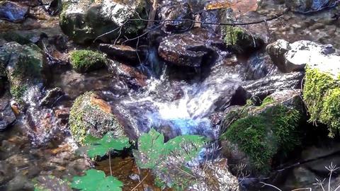waterfall Footage