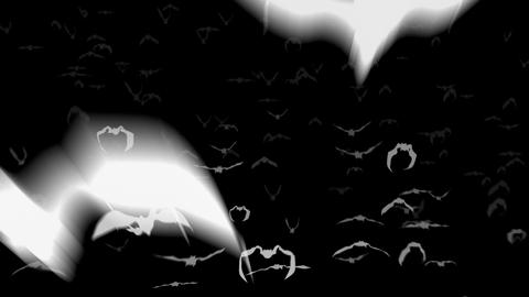 Flying bats 4k. Two versions Animation