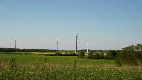 The green grassy field with windmills FS700 4K Ody Footage