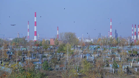 Cemetery on the background of an oil refinery Live Action