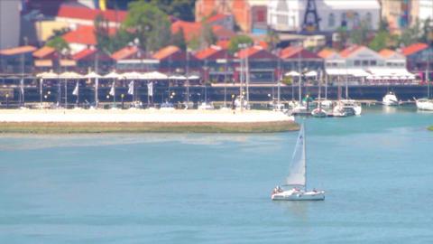 Sail Boat Lisbon Live Action