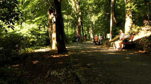 People Riding Bicycles In Nature Stock Video Footage