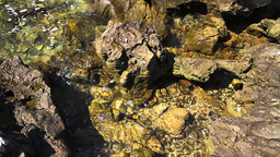Rocky coastline, detail Stock Video Footage