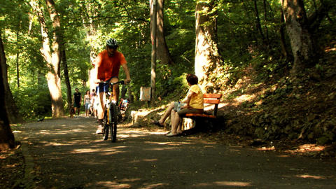Bicyclist Nature Woods Stock Video Footage