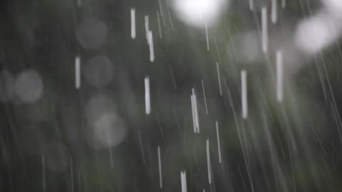 Raindrops Stock Video Footage