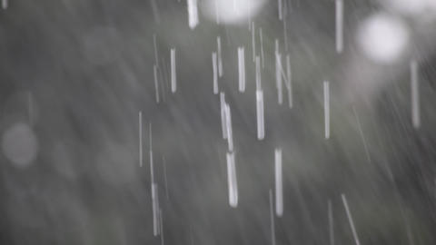 Raindrops Stock Video Footage