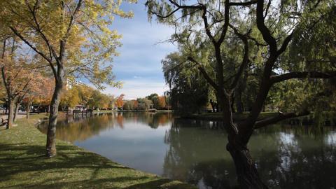 Calm lake Stock Video Footage