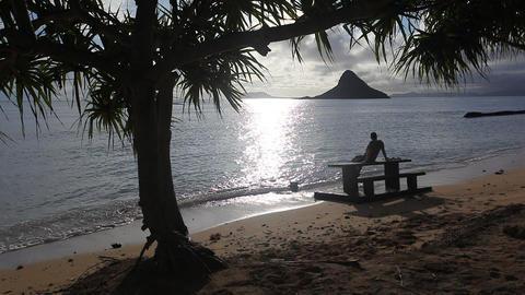 Hawaiian Beach Stock Video Footage