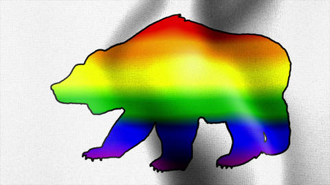 rainbow bear waving flag Stock Video Footage