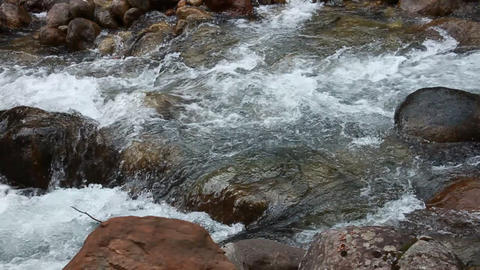 Creek with fairly large rocks Stock Video Footage