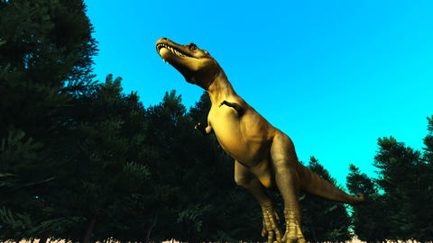 Dinosaur T-REX Stock Video Footage