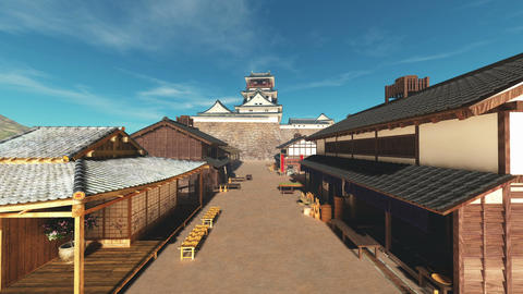 Japanese castle Stock Video Footage