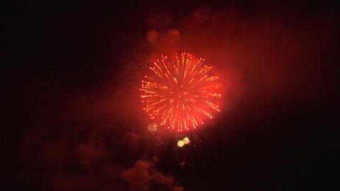 firework 33b Stock Video Footage