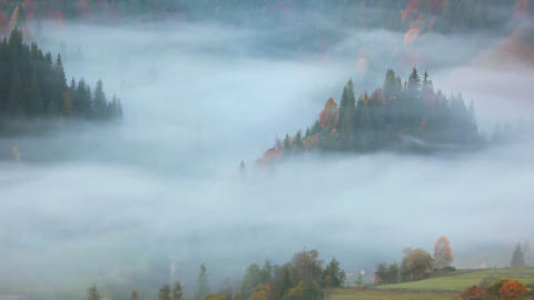 Morning Fog in the Forested Mountains Footage