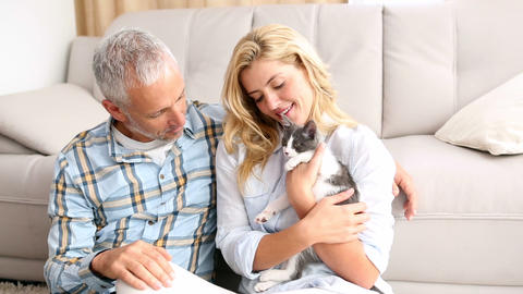Happy couple with their kitten on the floor Footage
