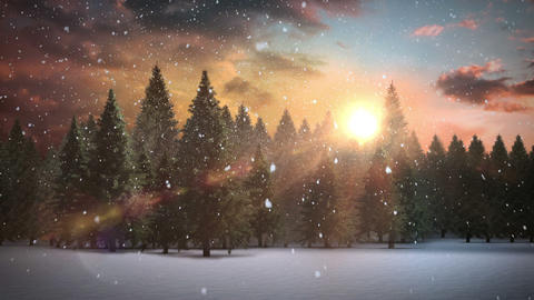 Snow falling on forest in snowy landscape Animation