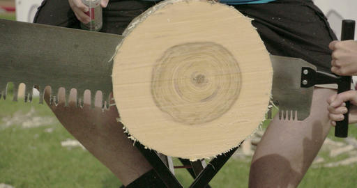 Three men sawing the big log Footage
