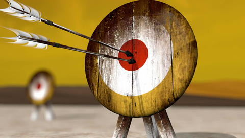 Medieval Arrow Target HD Stock Video Footage