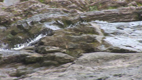 waterfall 21 Stock Video Footage